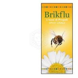 BRIKFLU Spray Nat.30ml