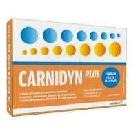 CARNIDYN PLUS 20 bustine